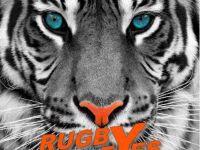 rugbyeyes-5WzDhGPL1-1.jpg